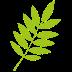 ico-regolamento-erba-ramaglie-potature